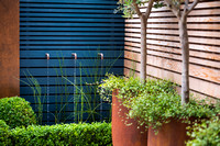 Small contemporary garden in Teddington. Designed by Tony Woods, All Photos © Joanna Kossak