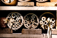 Insect hotel, Wisley Gardens