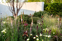 The Jeremy Vine Texture Garden